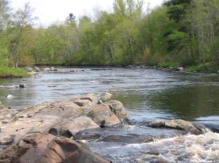 Image for Flambeau River State Forest